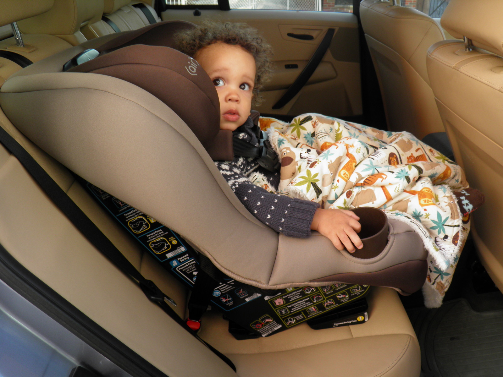 Published At 1600 X 1200 In Maxi Cosi Pria 70 Convertible Car Seat