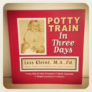 Potty Train in Three Days (book)